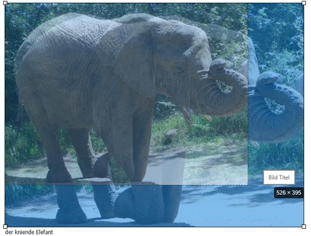 Rückmeldung von Joomla über die temporäre Größe des Bildes