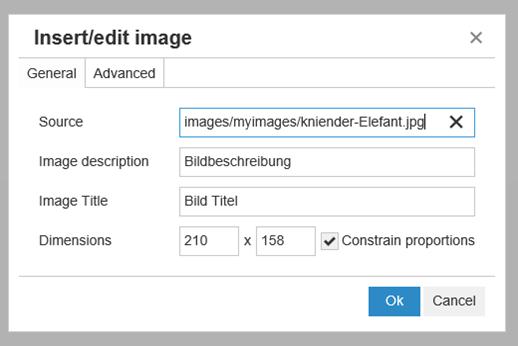 Eintrag der neuen Bildgröße von Joomla in den Dimensions