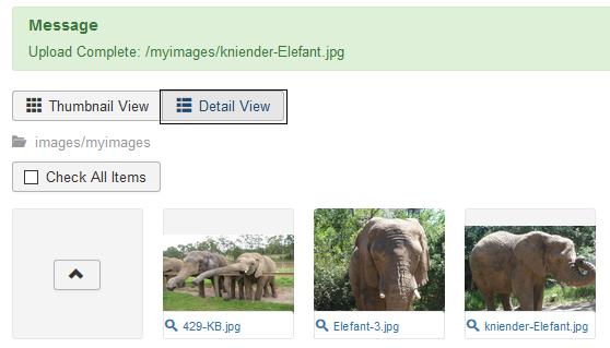 """Joomla Bilder hochladen 3 Bilder jetzt im Ordner """"myimages"""""""