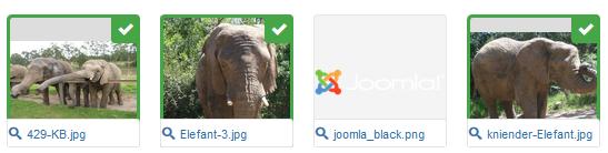 Joomla 3 Bilder haben einen grünen Haken