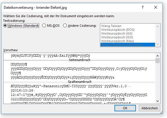 Word Einfügen eines Bildes (jpg-Datei) in Word so nicht möglich
