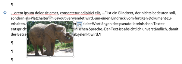 Word Layoutoption mit Textumbruch Vor den Text