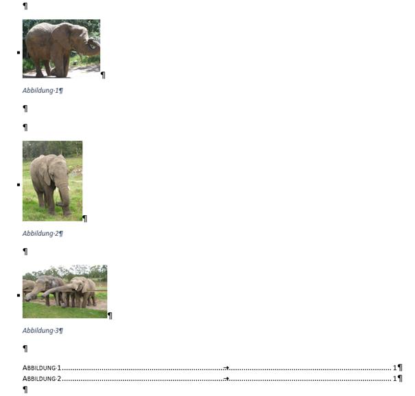 Word Ausgangssituation vor Abbildungsverzeichnis aktualisieren