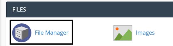 Weg zum File Manager in cPanel