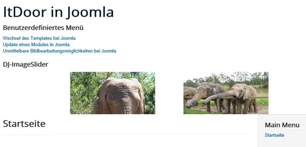 Joomla Slider Bild mit der Elefantengruppe jetzt rechts