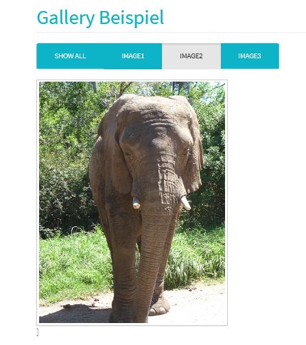 Joomla Website das zweite Bilder der Galerie