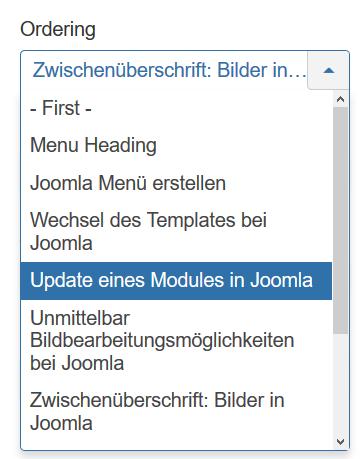 Joomla Reihenfolge Menüpunkte Ort für Zwischenüberschrift auswählen