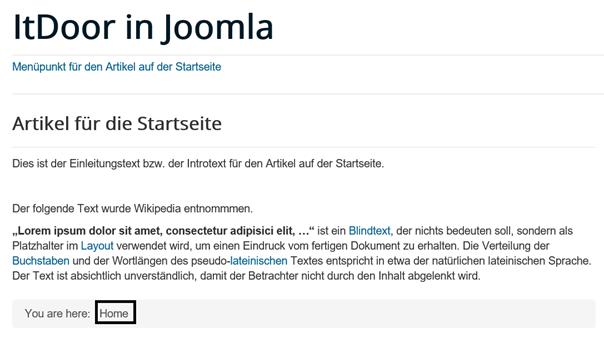 Joomla Website 1 Artikel auf der Startseite