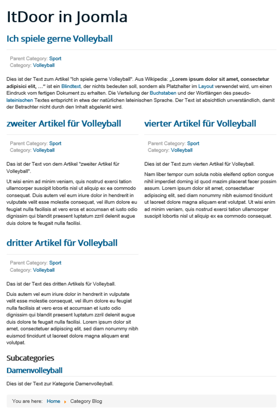 Joomla Website mit Category Blog
