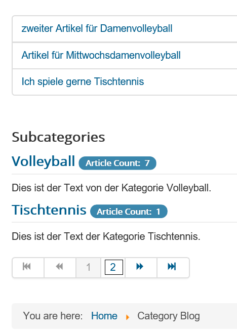 Joomla Category Blog mit Include Subcategories All unterer Teil