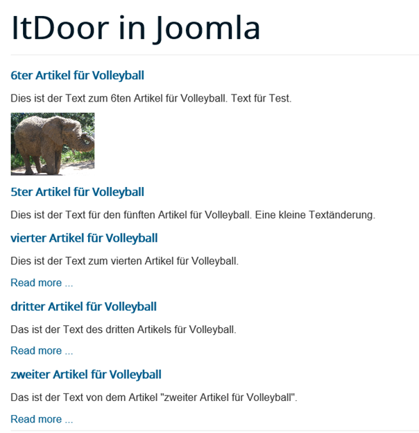 Joomla Website Module Articles Newsflash mit Show Images ist Yes