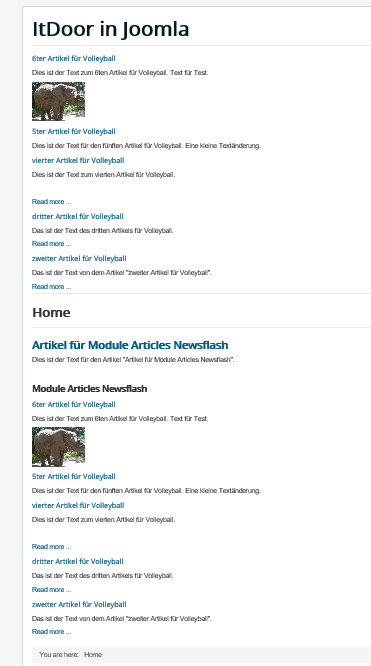 Joomla Website Article mit integriertem Modul Articles Newsflash