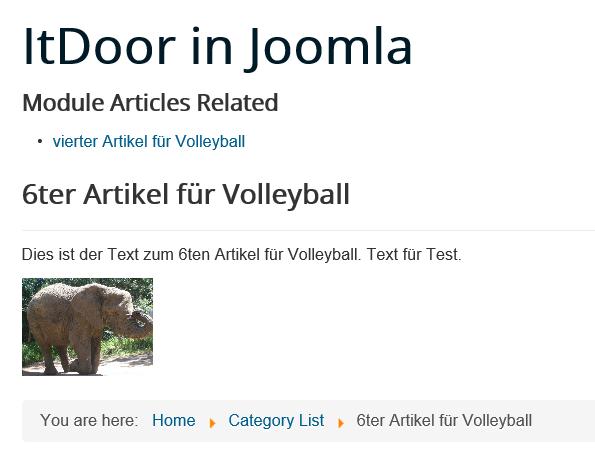 Joomla Website mit einem verwandten Artikel