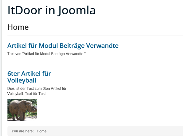 Joomla Website Artikel mit Modul Beiträge Verwandte ohne verwandte Beiträge