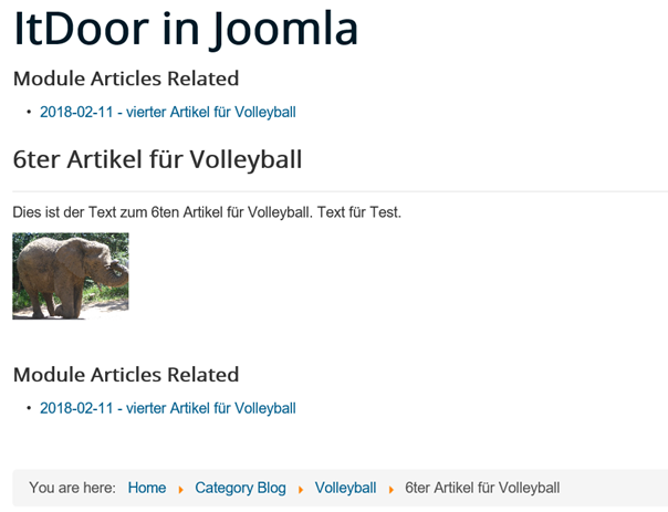Joomla Website mit Module Articles Related direkt und im Artikel