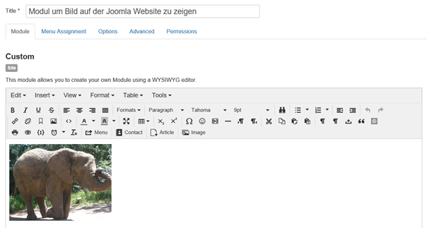 Joomla Modul mit integriertem Bild