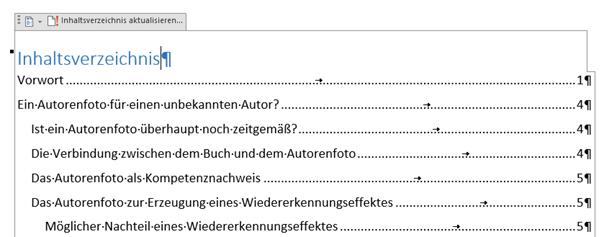 Word Inhaltsverzeichnis mit Seitenzahlen