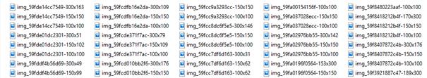 Windows Explorer Selektion *-*.png im Upload Verzeichnis von WordPress
